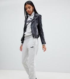 Серые спортивные брюки Puma Essentials - Серый