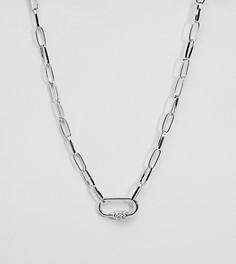 Ожерелье ASOS DESIGN Curve - Серебряный