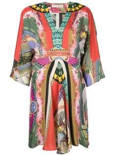 платье с V-образной горловиной и принтом 'Circus' Etro