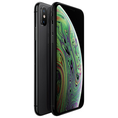 Смартфон Apple iPhone XS 64GB Space Grey (MT9E2RU/A)