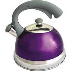 Чайник TimA 2.5 л фиолетовый K-24