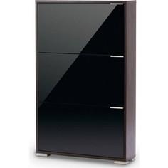 Обувница Вентал Арт Viva-3 стекло венге/черный глянец
