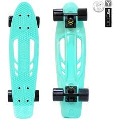 RT 405-A Скейтборд Skateboard Fishbone с ручкой 22 винил 56,6х15 с сумкой AQUA/black