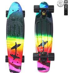 RT 401G-O Скейтборд Fishskateboard Print 22 винил 56,6х15 с сумкой Offshore