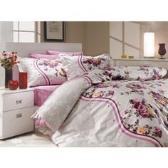 Комплект постельного белья Hobby home collection Семейный, поплин, Susana, лиловый (1501000176)