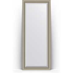 Зеркало напольное с фацетом поворотное Evoform Exclusive Floor 81x201 см, в багетной раме - хамелеон 88 мм (BY 6120)