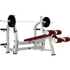 Скамья для жима с отрицательным наклоном Bronze Gym J-024