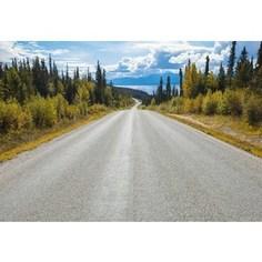 Фотообои National Geographic Atlin Road (3,68х2,54 м)
