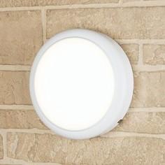 Уличный настенный светодиодный светильник Elektrostandard 4690389104855