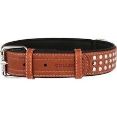 Ошейник CoLLaR SOFT кожаный двойной с металлическими украшениями ширина 35мм длина 57-71см коричневый верх, черный низ для собак (7226)