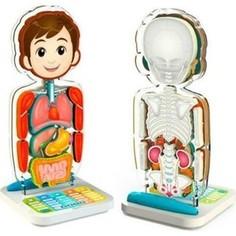 Развивающая игрушка Oregon Scientific SA218 Занимательная анатомия обучающее устройство (SA218)