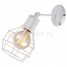 Бра 9182 A9182AP-1WH Arte Lamp