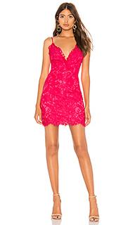 Кружевное мини-платье bradley - NBD