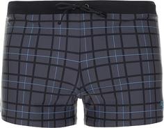 Плавки-шорты мужские Speedo Valmilton, размер 48-50