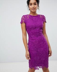 Фиолетовое кружевное платье-футляр с короткими рукавами Paper Dolls - Фиолетовый