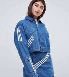 Джинсовая куртка с диагональной полоской adidas Originals X Danielle Cathari - Синий
