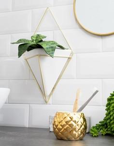 Золотистый настенный цветочный горшок треугольной формы Umbra - Мульти