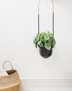 Подвесной цветочный горшок (черный/золотистый) Umbra - Мульти