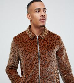 Спортивная куртка на молнии с леопардовым принтом ASOS DESIGN Tall - Рыжий