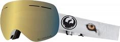 Маска сноубордическая Dragon X1S