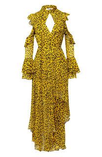Шелковое платье-макси с принтом Diane Von Furstenberg