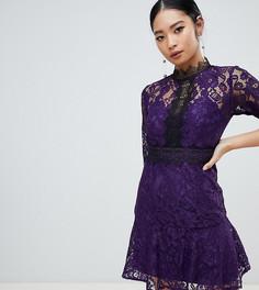 Фиолетовое приталенное платье с кружевом для выпускного Little Mistress Petite - Фиолетовый