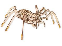 Конструктор EWA Spider