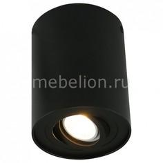 Накладной светильник 5644 A5644PL-1BK Arte Lamp