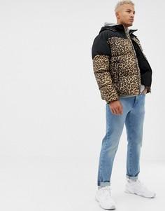 Дутая куртка с леопардовым принтом boohooMAN - Черный