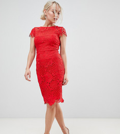 Красное платье-футляр из кружева кроше с короткими рукавами Paper Dolls Petite - Красный