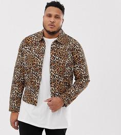 Джинсовая куртка с леопардовым принтом ASOS DESIGN Plus - Рыжий