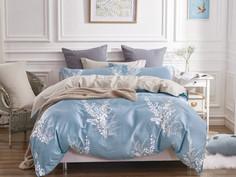 Постельное белье Cleo Satin Lux 20/290-SL Комплект 2-спальный Сатин