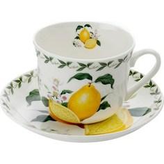 Чашка с блюдцем Maxwell & Williams Лимон (MW637-PB8108)