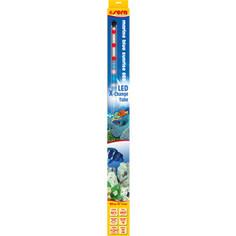 Лампа SERA PRECISION LED Marine Blue Sunrise LED X-Change Tube светодиодная 660мм 14W 20V для аквариумов