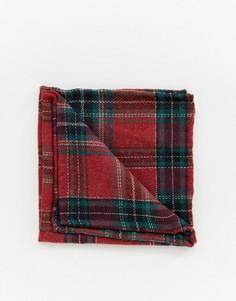 Красный платок-паше в клетку тартан Twisted Tailor - Красный
