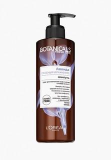 """Шампунь LOreal Paris LOreal """"Botanicals, Лаванда"""", для тонких волос, увлажняющий, 400 мл, без парабенов, силиконов и красителей"""