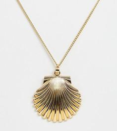Ожерелье с подвеской-ракушкой DesignB London - Золотой