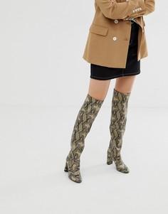 Ботфорты на каблуке со змеиным рисунком New Look - Бежевый