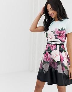 76f5fd8cca97 Короткое приталенное платье с цветочным принтом Ted Baker Wilmana - Мульти