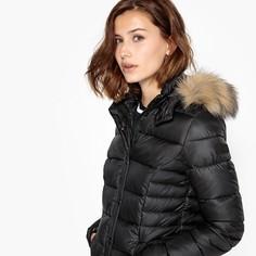 Куртка стеганая короткая с капюшоном, демисезонная модель Kaporal 5
