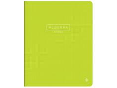 Тетрадь Greenwich Line Color Point Алгебра 48 листов EX48-21850