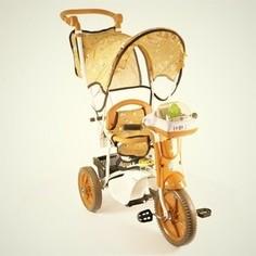 Трехколесный велосипед Jaguar MS-0747 коричневый