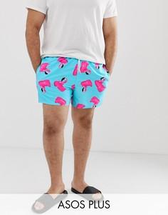 Короткие шорты для плавания с принтом фламинго ASOS DESIGN Plus - Синий