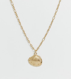 Ожерелье с ракушкой и кованой отделкой Liars & Lovers - Золотой