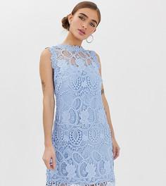 Голубое кружевное платье А-образного силуэта Paper Dolls Petite - Синий