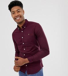 Бордовая оксфордская рубашка скинни Farah - Красный