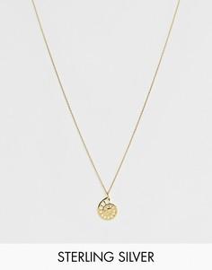 Ожерелье из позолоченного серебра с подвеской в виде ракушки ASOS DESIGN - Золотой