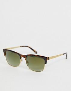 Черепаховые солнцезащитные очки с зелеными стеклами Ted Baker - Коричневый