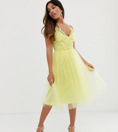 Платье миди из тюля на бретельках с кружевным топом ASOS DESIGN Petite Premium - Желтый