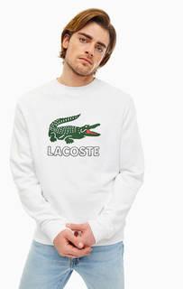 Хлопковый свитшот с логотипом бренда Lacoste